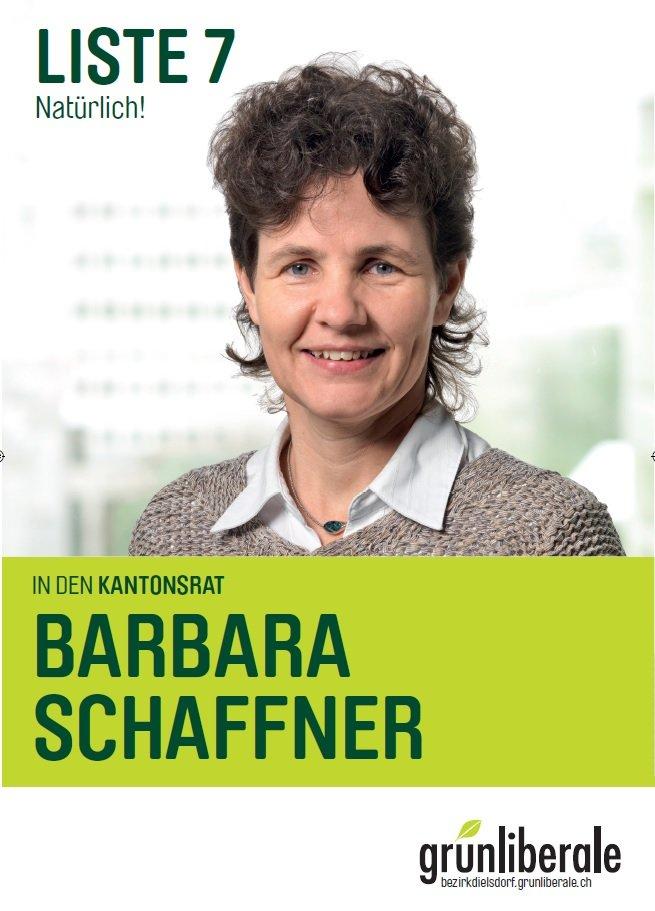 Kantonsratskandidatur-2011.jpg